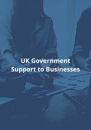 UK Government Support to Businesses